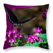 Black Butterfly 06 Throw Pillow