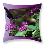 Black Butterfly 07 Throw Pillow