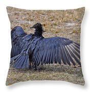 Black Buzzard Back Throw Pillow