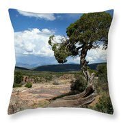 Black Canyon Juniper Throw Pillow