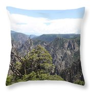 Black Canyon Of The Gunnison Panorama Throw Pillow