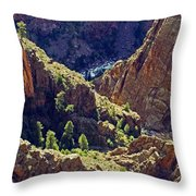 Black Canyon Of The Gunnison Throw Pillow