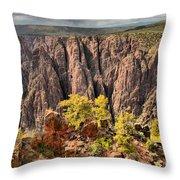 Black Canyon Spires Throw Pillow