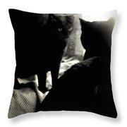 Black Cat And Vintage Mirror  Throw Pillow