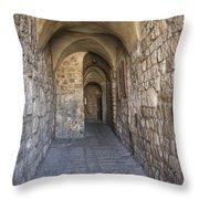 Black Cat In Jerusalem Israel Throw Pillow