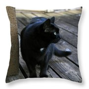 Black Cat On Porch Throw Pillow