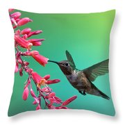 Black Chinned Hummingbird Throw Pillow