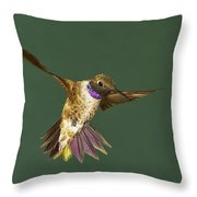 Black-chinned Throw Pillow