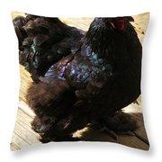 Black Cochin Throw Pillow