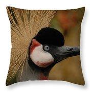 Black Crowned Crane Throw Pillow