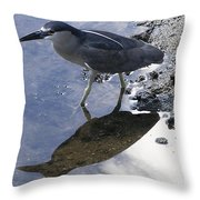 Black Crowned Night Heron And Shadow Throw Pillow