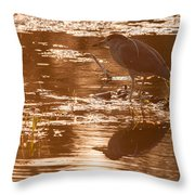 Black-crowned Night Heron Sunset Throw Pillow