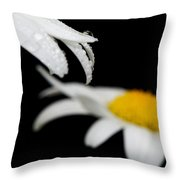 Black Daisy Reflection Throw Pillow