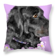 Black Dog Pretty In Lavender Throw Pillow