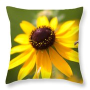 Black-eyed Susan With Friend Throw Pillow
