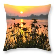 Black-eyed Susans Sunrise Throw Pillow
