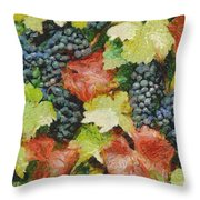 Black Grapes Throw Pillow