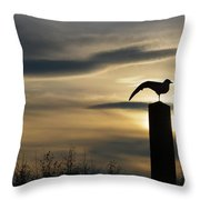 Black Headed Gull   Larus Ridibundus Throw Pillow