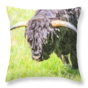 Black Highland Cattle Bull Throw Pillow