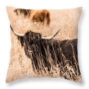 Black Highland Cow Throw Pillow