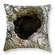 Black Hole Where Time Can Not Hide Natural Abstract Throw Pillow