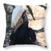 Black Hornbill Throw Pillow