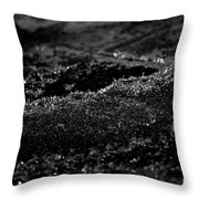 Black Ice Abstract Throw Pillow