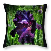 Black Iris After The Rain Throw Pillow