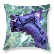 Black Iris Closeup Throw Pillow
