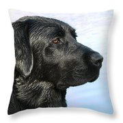 Black Labrador Retriever After The Swim Throw Pillow