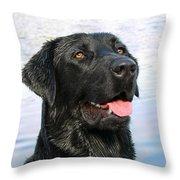 Black Labrador Retriever Dog Smile Throw Pillow