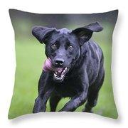Black Labrador Running Throw Pillow