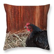 Black Laying Hen On Nest Art Prints Throw Pillow