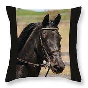 Black Mare Portrait Throw Pillow