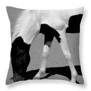Black N White Horse Throw Pillow