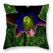 Black Narcissus Throw Pillow