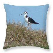 Black-necked Stilt Throw Pillow