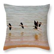 Black-necked Stilt - Lake Powell Throw Pillow