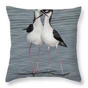 Black-necked Stilts Throw Pillow