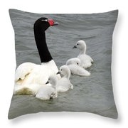 Black Necked Swan Patagonia  Throw Pillow