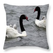 Black Necked Swans Patagonia 1 Throw Pillow
