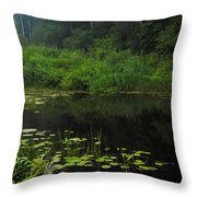 Black Pond Throw Pillow