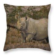 Black Rhino Tanzania Throw Pillow