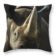 Black Rhinoceros Portrait Throw Pillow