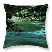 Black River Nj Throw Pillow