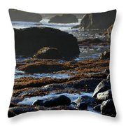 Black Rocks Lichen And Sea  Throw Pillow