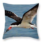 Black Skimmer In Flight Throw Pillow