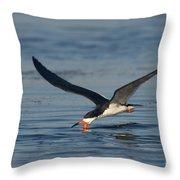 Black Skimmer Rynchops Niger Skimming Throw Pillow