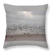 Black Skimmers On The Beach At Dawn Throw Pillow