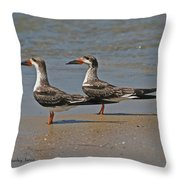 Black Skimmers On The Beach Throw Pillow